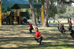 Kung Fu training in the park